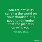 shoulder quote