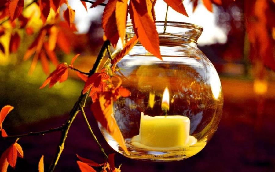 autumn-light-natural-wallpapers